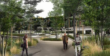 Hybrid City Landscape